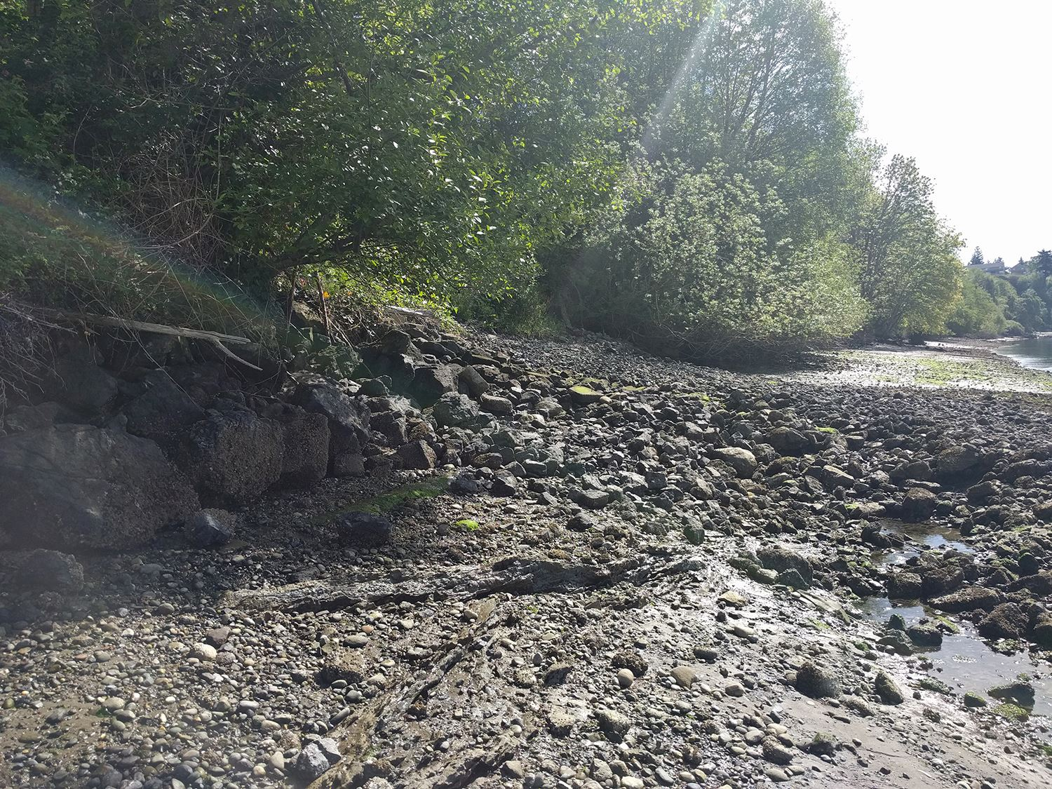 East Park Stormwater Outfall