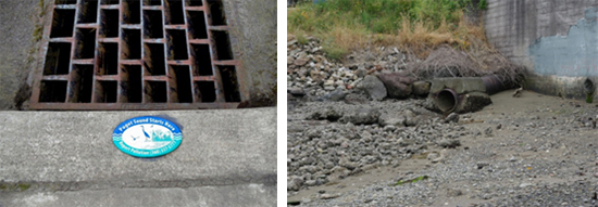 Stormwater Pollution Prevention | Bremerton, WA - Official